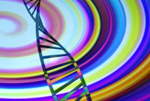 ADN-uman-web